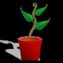 plantes_p