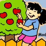 MDMcassetetespommesP-page-007